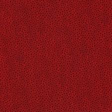 Rio Skins Decorator Fabric by Kravet