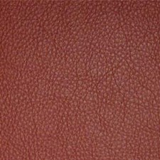 Claret Decorator Fabric by Maxwell