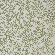 Wakame Decorator Fabric by Maxwell