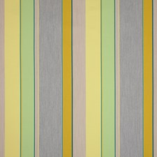Citrus Decorator Fabric by Silver State