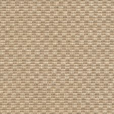 Sand Drift Decorator Fabric by Kasmir