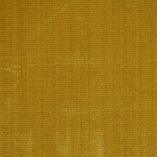 Gold Strie Decorator Fabric by Scalamandre