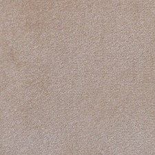 Castoro Decorator Fabric by Scalamandre