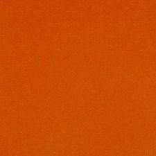 Arancio Decorator Fabric by Scalamandre