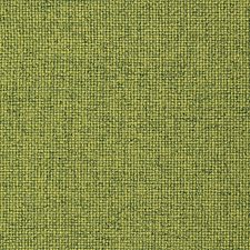 Palude Decorator Fabric by Scalamandre