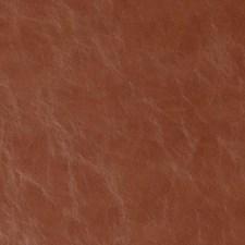 Terracotta Animal Skins Decorator Fabric by Duralee