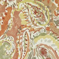 Blossom Paisley Decorator Fabric by Duralee