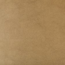 Camel/Beige Solids Decorator Fabric by Kravet