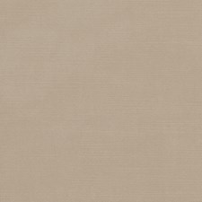 Almond Solid Decorator Fabric by Duralee