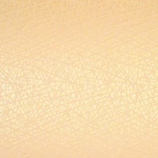 Cipria Decorator Fabric by Scalamandre