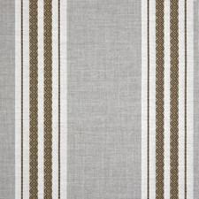 Safari Decorator Fabric by Silver State