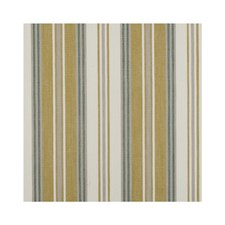 Citrus Stripes Decorator Fabric by Clarke & Clarke