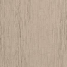 Beech Solids Decorator Fabric by Clarke & Clarke