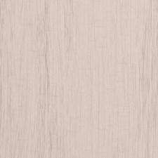 Limestone Faux Silk Decorator Fabric by Clarke & Clarke
