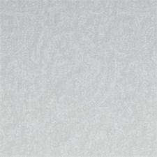 Linen Paisley Decorator Fabric by Clarke & Clarke