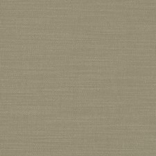 Eucalyptus Solids Decorator Fabric by Clarke & Clarke