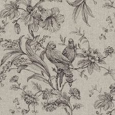 Charcoal Birds Decorator Fabric by Clarke & Clarke
