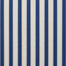 Riviera Stripes Decorator Fabric by Clarke & Clarke