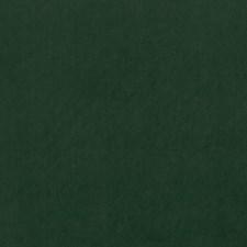 Emerald Decorator Fabric by Clarke & Clarke