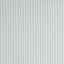 Stripe Mineral Decorator Fabric by Clarke & Clarke