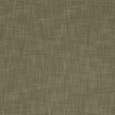 Bark Solids Decorator Fabric by Clarke & Clarke