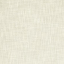 Bone Solids Decorator Fabric by Clarke & Clarke
