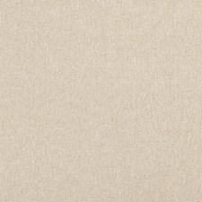 Bone Solids Decorator Fabric by Clarke & Clarke
