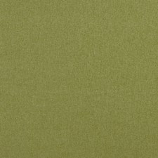 Leaf Solids Decorator Fabric by Clarke & Clarke