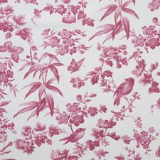 Raspberry Decorator Fabric by Clarke & Clarke