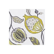 Chartreuse/Charcoal Decorator Fabric by Clarke & Clarke