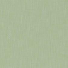 Celadon Decorator Fabric by Clarke & Clarke