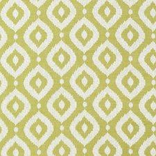 Apple Decorator Fabric by Clarke & Clarke