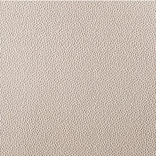 Stone Animal Skins Decorator Fabric by Kravet