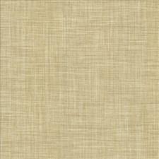 Dust Decorator Fabric by Kasmir
