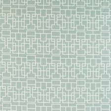 Cactus Modern Decorator Fabric by Kravet
