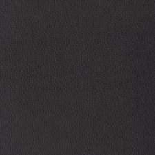 Purple/Plum Solid Decorator Fabric by Kravet