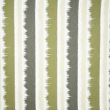 Lichen Stripe Decorator Fabric by Pindler
