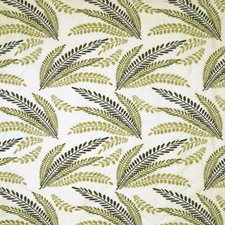 Fern Decorator Fabric by Kasmir
