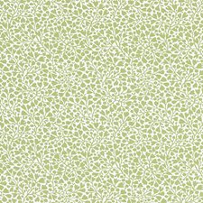 Willow Decorator Fabric by Scalamandre