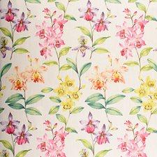 Botanique Decorator Fabric by Scalamandre