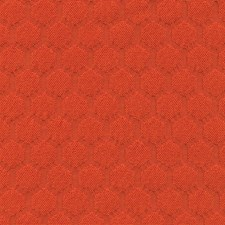 Poppy Decorator Fabric by Silver State