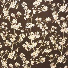Fudge Decorator Fabric by Kravet