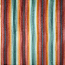 Jewel Stripe Decorator Fabric by Pindler