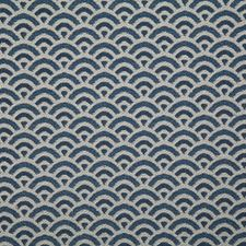 River Contemporary Decorator Fabric by Pindler