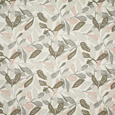 Biscotti Contemporary Decorator Fabric by Pindler