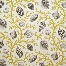 Citron Decorator Fabric by Kasmir