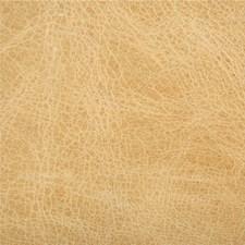 L-Haute-Blonde Solids Decorator Fabric by Kravet