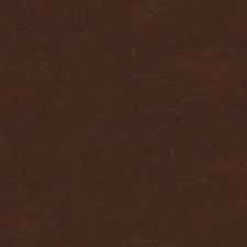 Amaretto Solids Decorator Fabric by Kravet