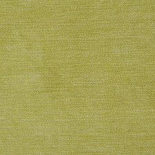Limeade Solid Decorator Fabric by Pindler