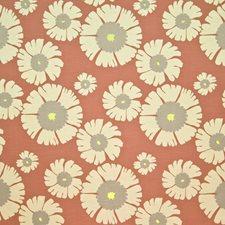 Tangelo Decorator Fabric by Kasmir